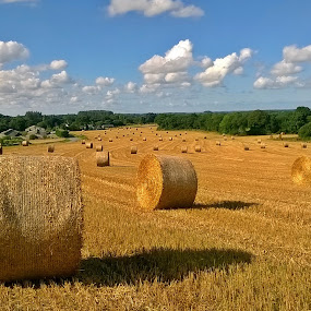 Summer games by Ciprian Apetrei - Instagram & Mobile Other ( mobile photos, summer, hay rolls, brittany, landscape )