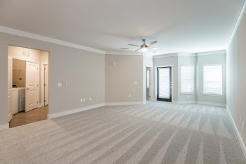 A4 living room with carpet, ceiling fan, and patio door
