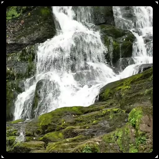 Live Wallpaper Waterfall 休閒 LOGO-玩APPs