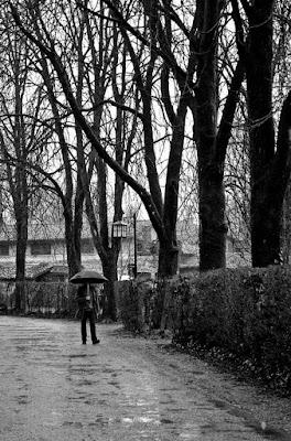 Passeggiata senza di te... di Niky_Photography