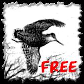 Giornale di caccia Free