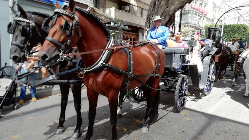 Carruajes por el Paseo de Almería.