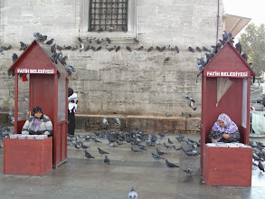 Photo: Booths selling pigeon food! Great....