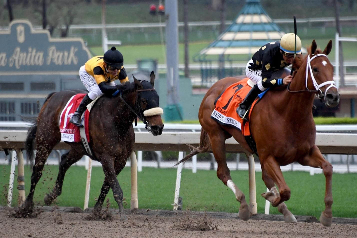 Horse Racing Is One of the Last Sports Still Standing in US ...