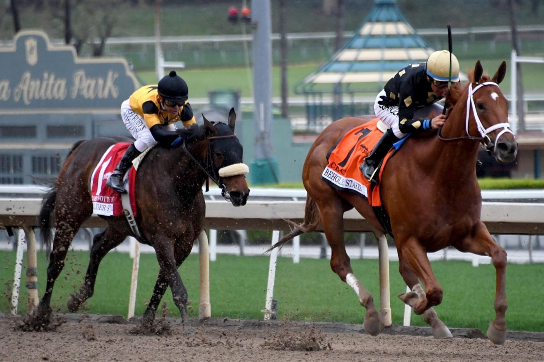international horse racing betting strategy