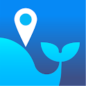 Swali – Get Local Opinions icon