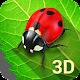 Bugs Life 3D Free - 3D Live Wallpaper