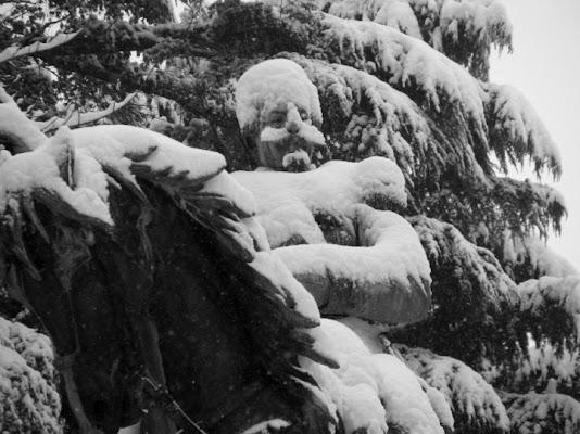 Dignità nella neve di Samaja