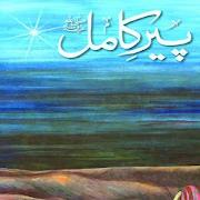 Peer E Kamil Novel