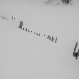 by Dušan Gajšek - Black & White Landscapes ( _mesta, ?g, ?abljak )