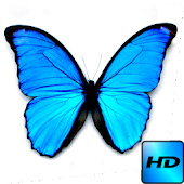 Butterfly 3D Live Wallpaper
