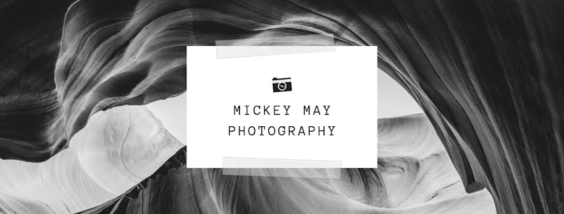 Mickey May Desert - Facebook Page Cover Template