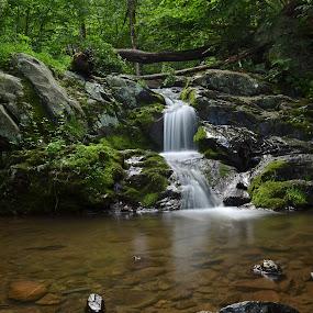 Shenadoah 2 by James Reil - Landscapes Waterscapes ( virgnia, waterfall, shenandoah national park )