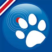 Mascota en Linea CR