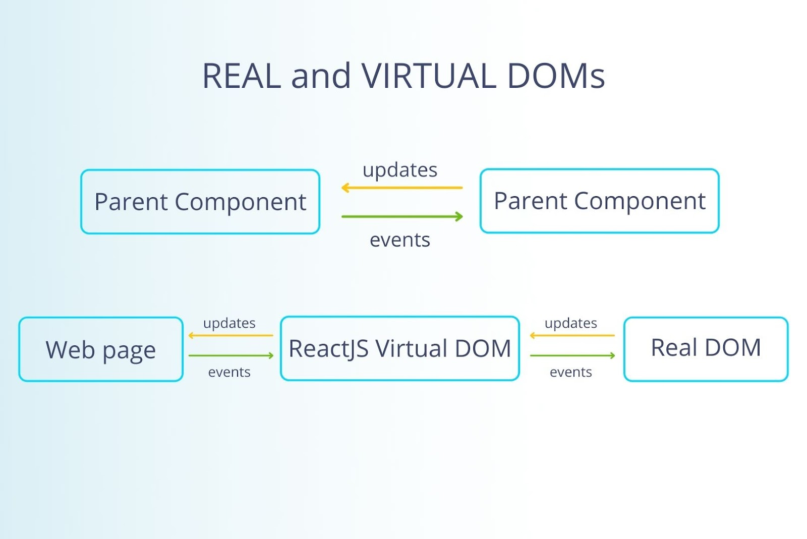 Real and Virtual DOMs