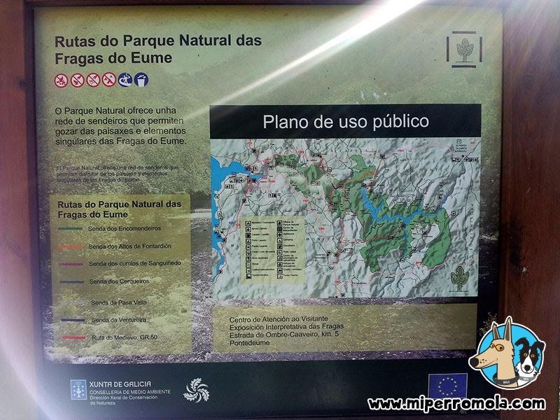 Senderismo con Perro Fragas Do Eume, A Coruña con un Can de Palleiro y un Border Collie