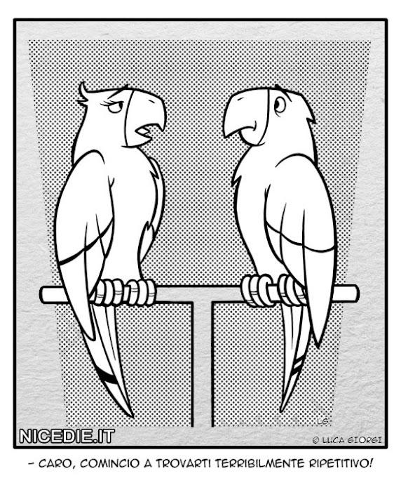 un pappagallo femmina dice al suo maschio: caro, cominci ad essere terribilmente ripetitivo