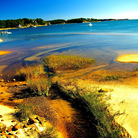 Inlet on the cape by Martin Stepalavich - Landscapes Beaches