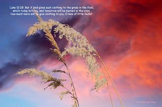 Photo: #Jesus #Christ #Bible #God #Lord #heaven #atheist #religion #christianity #Prophecy #wisdom #inspire #scripture #beliefs #love