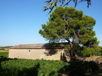 propriété à Montbrun-des-Corbières (11)
