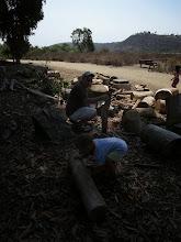 Photo: Woodchoppers