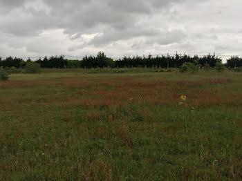terrain à Carsac-de-Gurson (24)