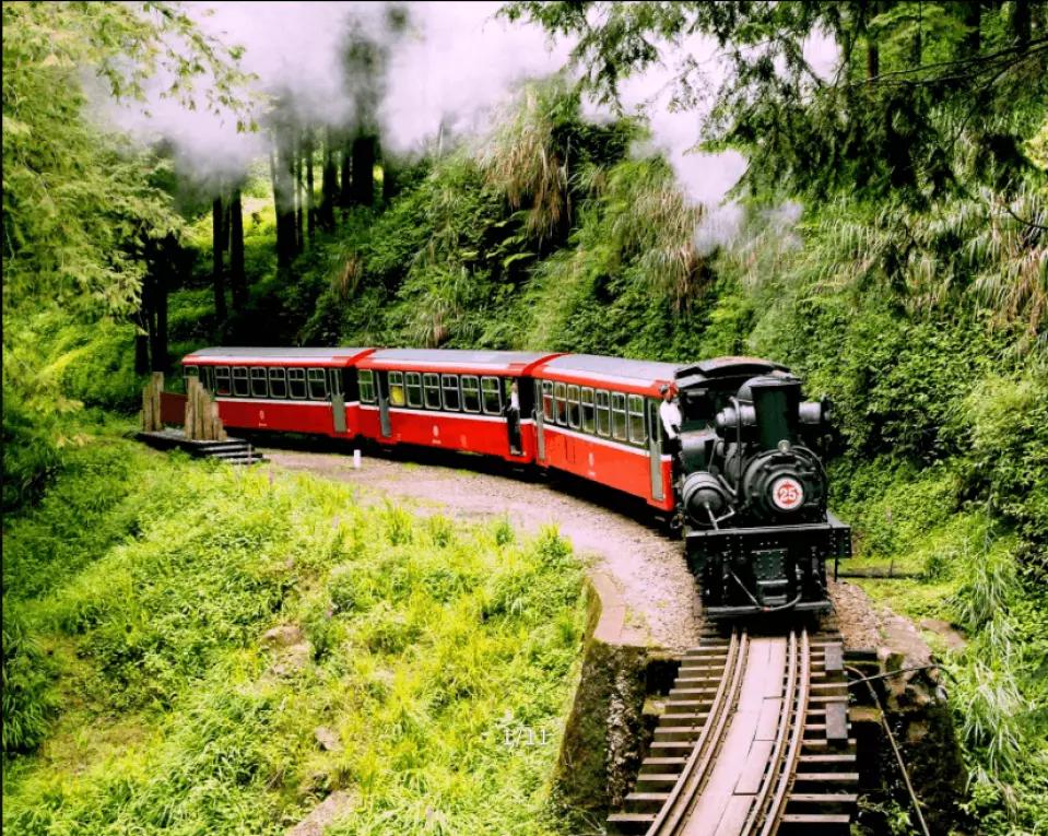 阿里山小火車&奮起湖老街