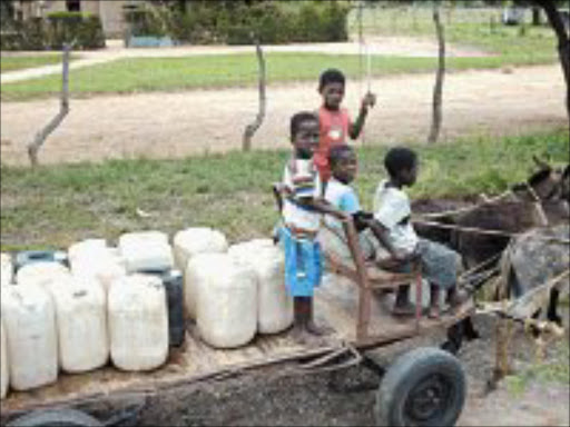 NECESSITY NICHE: These young bouys from Lefiso village in Mpumalanga collect water in their village and then go out in a donkey cart to sell it to villages where water is in short supply. Pic. Alfred Moselakgomo. © Sowetan.