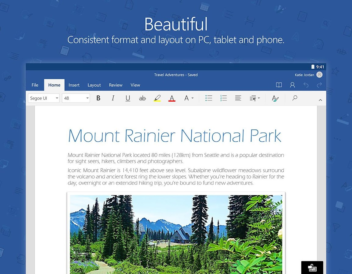 Microsoft Word- screenshot