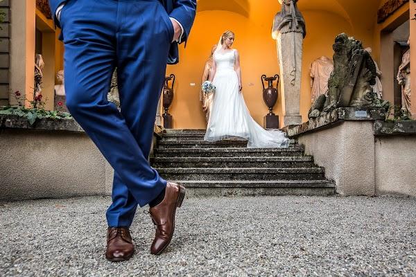 Hochzeitsfotograf Reza Shadab (shadab). Foto vom 26.06.2017