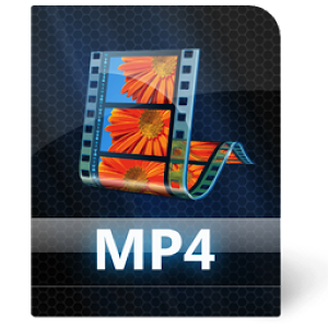 Video converter mp4 SantAndrew v4.7 by Sylkat logo
