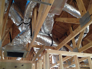 """Photo: October 18, 2012 Neil: """"My,..what ducts you have..."""" Photo by Lake Weir Living"""
