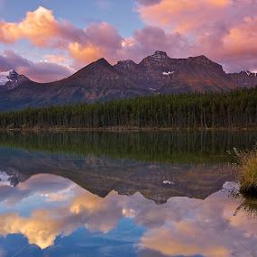 Herbert Lake - Banff National Park by Dan Warkentin - Landscapes Mountains & Hills ( water, clouds, reflection, mountain, herbert lake, rockies )
