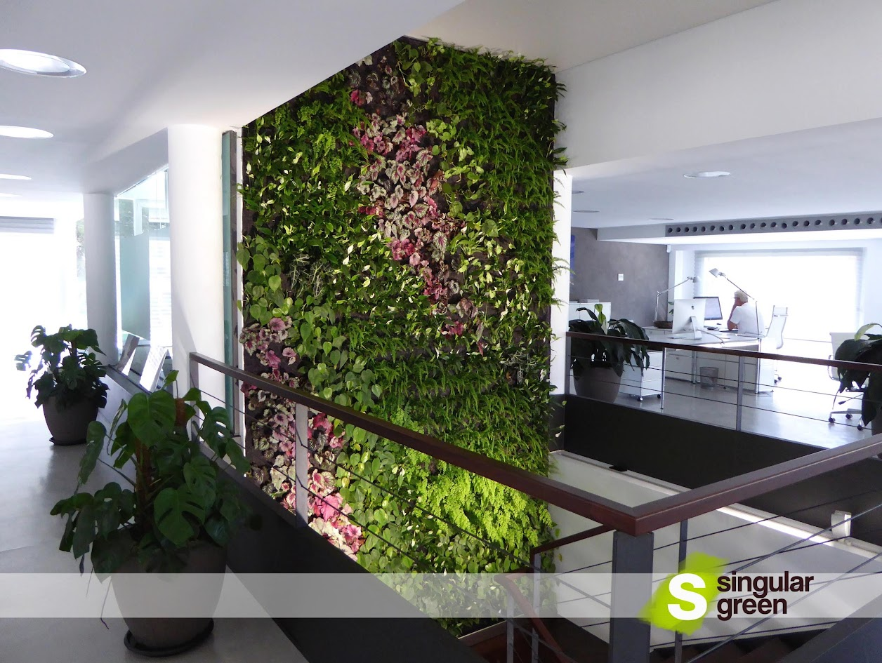 Green Wall in Majorca - Vertical Garden in Majorca