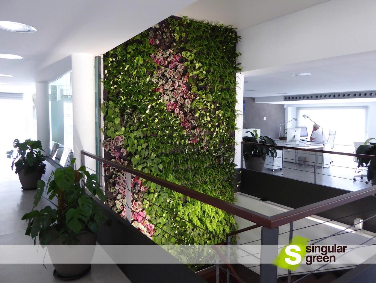 Green Wall in Majorca - Vertical Garden in Majorca