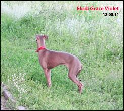 Photo: Eledi Grace Violet