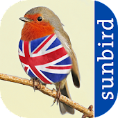 All Birds UK  - A Sunbird Field Guide