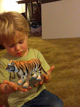 Photo: We might just keep this little tiger baby around. He's so much easier than a puppy! :P I am a member of the Collective Bias™ Social Fabric® Community.  This content has been compensated as part of a social shopper insights study for Collective Bias™. and Cypher Kids Club #CBias #SocialFabric All opinions are my own, honest opinions based on my experience with the product.