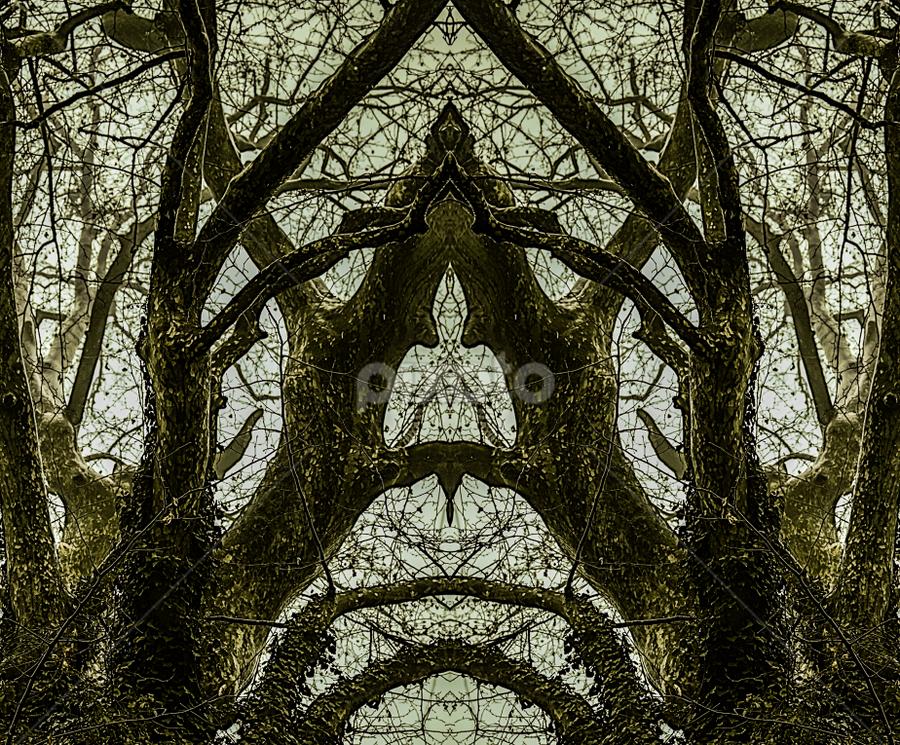SofiaCamplioniCom (21011) by Sofia Camplioni - Abstract Patterns