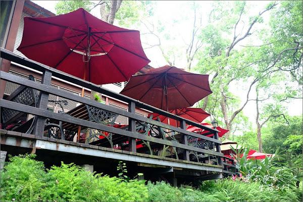 上田咖啡休閒莊園@樟樹林裡的咖啡香、愛心椅、適合親子聚會