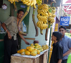 Photo: Small Fruit Stand Wattala Sri Lanka