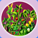 Organic Vegetables Farming icon