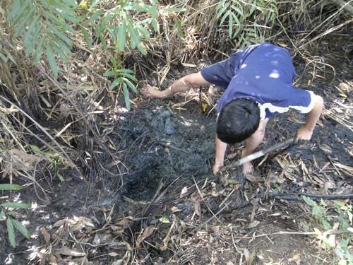 Làm hầm bắt cá vào mùa khô ở rừng U Minh Hạ 2