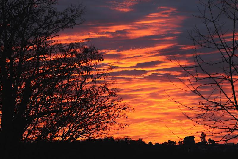 Dawn di Carmelo Vecchio
