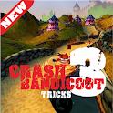 Pro Crash Bandicoot 3 tricks icon