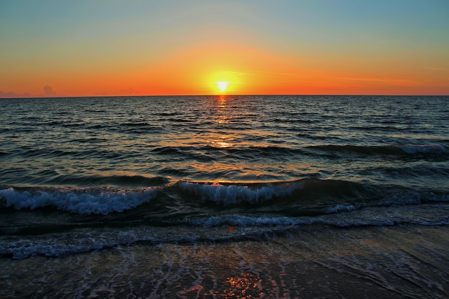 I Should Have Chased You by Michiale Schneider - Landscapes Sunsets & Sunrises ( sunset, gulf of mexico, beach, landscape,  )