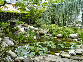 """Photo: Acorn Ponds & Waterfalls, Certified Aquascape Contractor since 2004. Check out our website www.acornponds.com and give us a call 585.442.6373.  Backyard #PondRemodel, #PondRestoration, Pond Upgrade, Replace in Rochester Park Ave Area. Waterfall Fish Pond Re-Build, Repair, Renovation, Re-Do, Make-over, Ecosystem Water Garden by Acorn Ponds & Waterfalls of Rochester NY.  To learn more about pond installations, please click here: www.acornponds.com/landscape-design.html """"  Tom, I appreciated the thorough job you did, with such details as multiple levels for plants and boulders to add interest when viewing the pond. The waterfall is impressive, and the underwater lighting adds a lot to the effect. You spent a lot of time getting all the rocks and boulders placed just right, and properly secured. I'm looking forward to many enjoyable hours by my new pond!"""" Jim D.  For more info about Jim's Pond Renovation please click here: www.facebook.com/notes/acorn-landscaping-landscape-designlightingbackyard-water-gardens/backyard-pond-remodel-pond-restoration-pond-upgrade-replace-in-rochester-park-av/242460159124447  Acorn Ponds & Waterfalls of Rochester NY, 585-442-6373, is a Certified Aquascape Contractor, Landscape Designer, Outdoor Lighting Designer, Installer, Builder, Contractor and Design Service Company from Rochester, NY. We have professional Installation and Design Services available for the following: Landscape Design Outdoor Room Design Backyard Ponds and Waterfalls Design & Construction Patios and Walkways: Paver, Stone, Brick Low Voltage Landscape Lighting LED Landscape Lighting Swimming Ponds Ecosystem Ponds LED Outdoor Lighting Retaining Walls Fountains Water Features Pondless Waterfalls Pond Maintenance and Design Aquatic and Under Water LED Lights Bubbling Boulders and Urns Natural Stone Patios and Rock Gardens Garden Ponds Outdoor Kitchens Pizza Ovens Fire Pits Fish or Koi Ponds Waterfall Ponds Low Maintenance Plantings Commercial Landscape Design Residenc"""