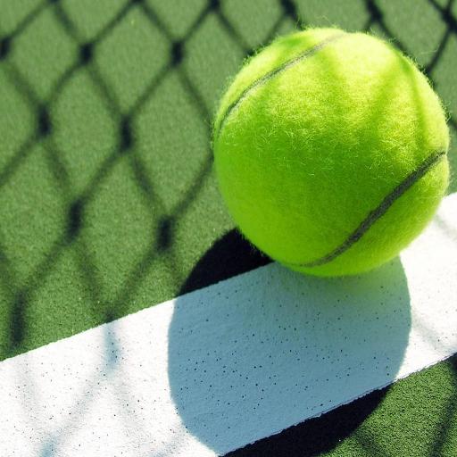 网球壁纸 個人化 App LOGO-硬是要APP