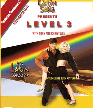 Niveau 1 salsa dv3
