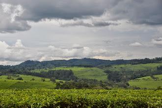 Photo: near Kamwenge